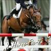 X-horse-fic-72-X