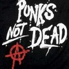 punks-not-dead3004