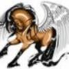 i-love-horse-83