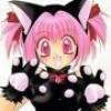 kittycatdu64