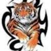 tatoo-tiger