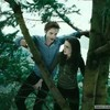 Twilight--story--life