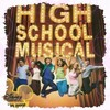 lovehighschoolmusical333