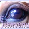 lovechevaux10110