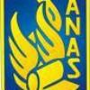anass-9-n
