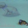 Nintendo-Dogs