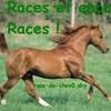 race-de-chev0