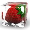 x-fraisee-x