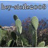 Hey-sicile2008