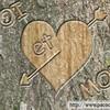 namoureuzdu63