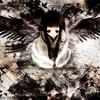 sacred-koga