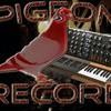 Pigeon-Record