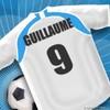 guillaume-bayefall