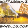 carppassion36