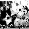 Sidney95