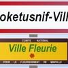 Moketusnif-Ville
