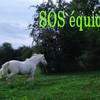 sos-equides-08200