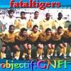 Fataltigers