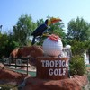 tropicalgolf
