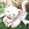 my-life-is-fairy