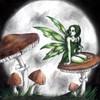 Piccola-Fata-Sognante