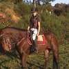 Equitation-x-Saulieu
