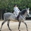 manon-passion-chevaux