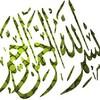 zaaim2007