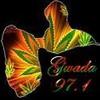 decale-gwada971