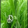 r0ck-in-peace