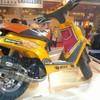 bull-x-five92