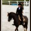 rubyhorse73