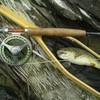 flyfishing23