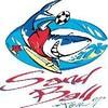 handballdim38