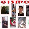 gismo06
