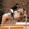 Izmir-Forever-Equitation