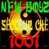 newboyz1001