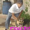 amr-wydadi2010