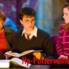 Hp-potterveille-Hp