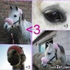 xx-concours--cheval-xx