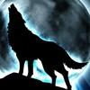 wolf578