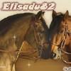 elisadu82