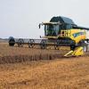 agriculturedu29