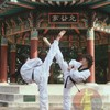 arts-martiaux1994