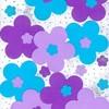 Minies-flowers