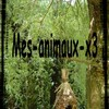 mes-animaux-x3