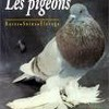 x-pigeons-x