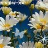 interview-xx