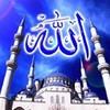 ayoub-ook