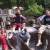 joy2007